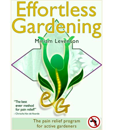 Affordable E Book Cover Design