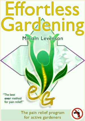 ebook cover art design for the information series - Effortless Gardening.